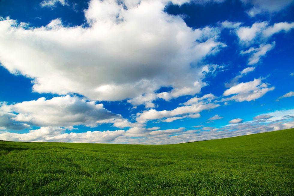 White fluffy clouds float over green grass and feels hopeful.